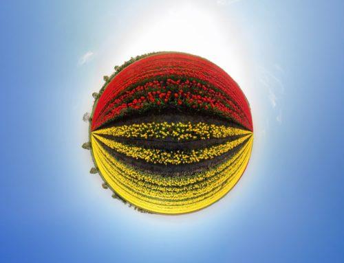 Schwaneberg