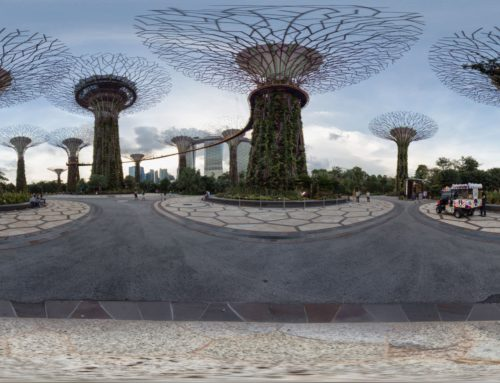 Singapore –  Gardens by the Bay